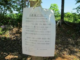 tanabe6.jpg