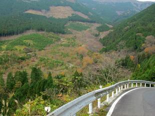 bodaiji-1.jpg