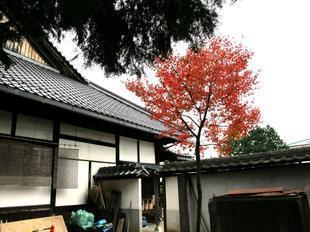 hongenji25.jpg