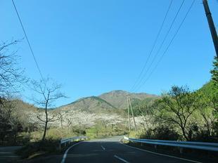koegatawa1.jpg