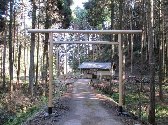 nanamri2.jpg