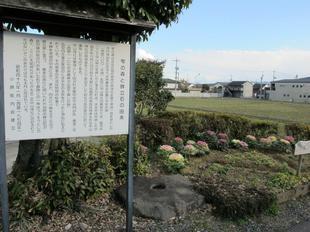 shizuku5.jpg
