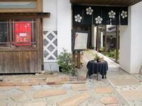 katsuyama010.jpg