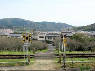 tateishi_4-6-14.jpg