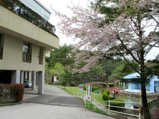 ueyama56.jpg