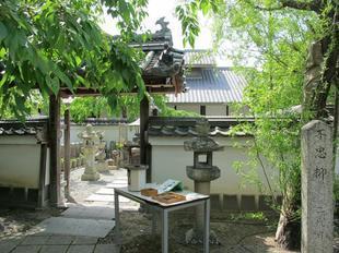 kagakuji12.jpg