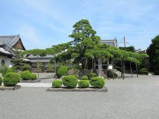 kagakuji47.jpg