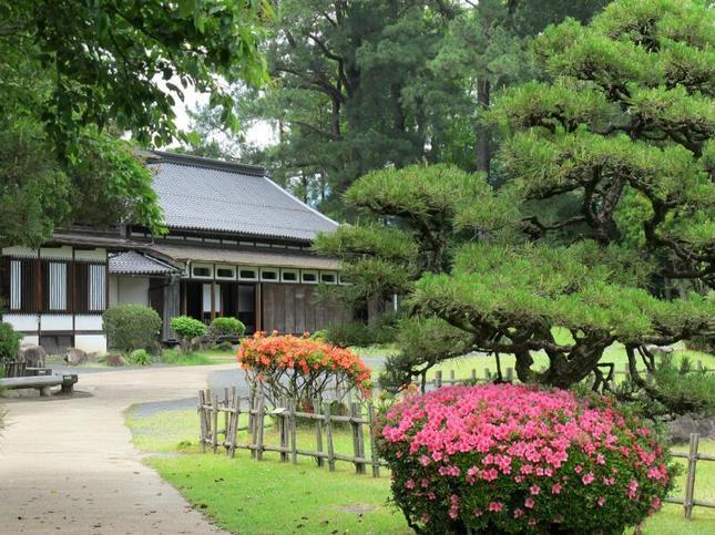 syuraku34.jpg