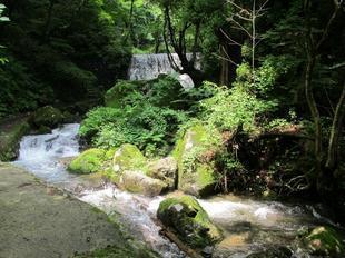 jyabuchi8.jpg
