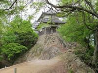 matsuyama1.jpg