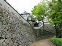 matsuyama11.jpg
