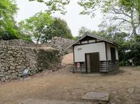 matsuyama13.jpg