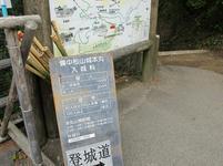 matsuyama39.jpg