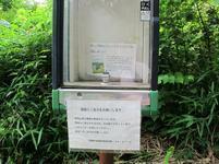 jyabuchi29.jpg