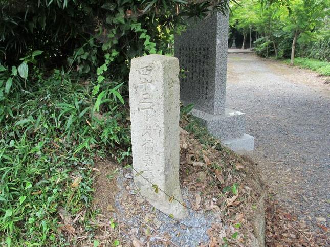nakayamaomori15.jpg