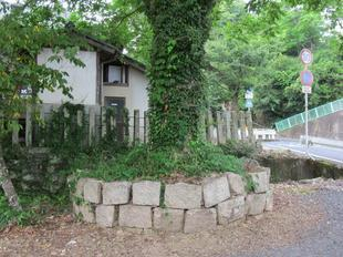 nakayamaomori6.jpg