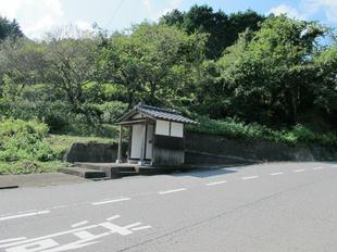 sara_daishi1.jpg