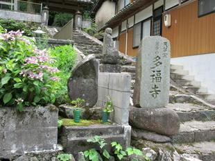 tafukuzi1.jpg