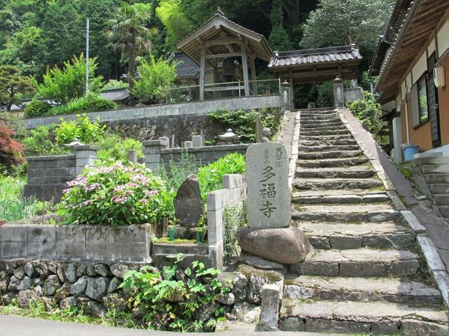 tafukuzi2.jpg