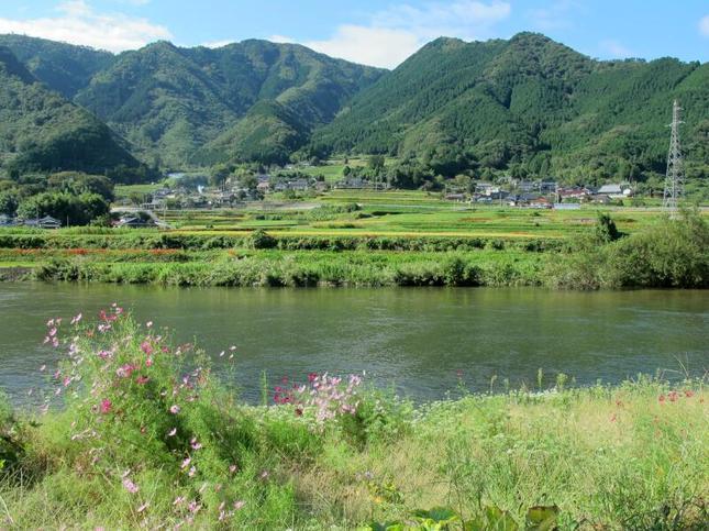 yoshi23-6.jpg