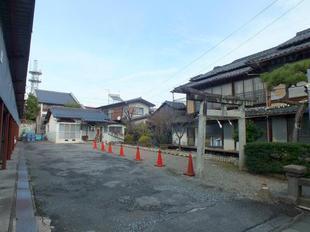 kozakura12.jpg