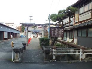 kozakura5.jpg