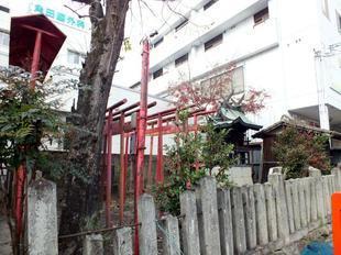 misaki15.jpg