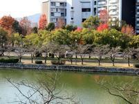 hiroshimajyo11.jpg