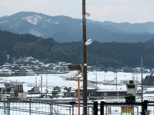 kamoeki1.jpg