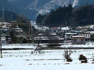 kamoeki11.jpg