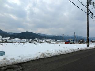kamoeki5.jpg