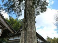 gokurakuji12.jpg