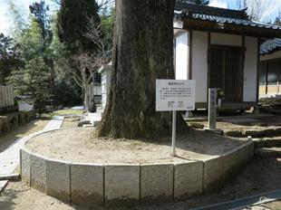 gokurakuji7.jpg