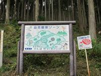 shinjyo48.jpg