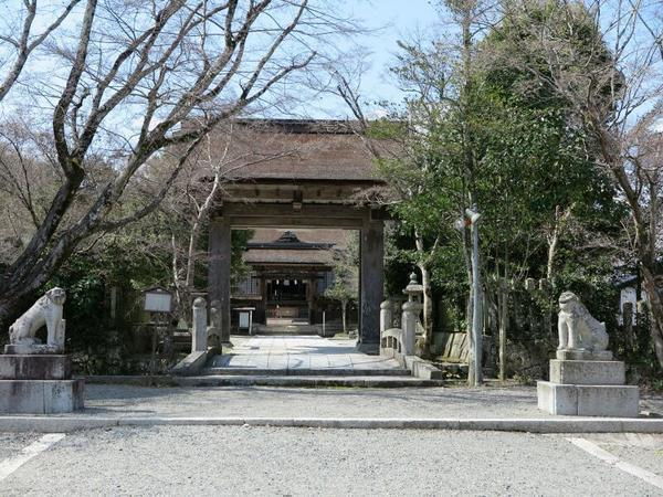 中山神社の高麗犬(こまいぬ)