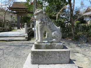 nakayama-koma3.jpg