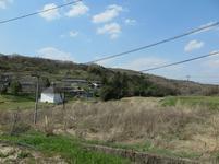 katayama4-14-1.jpg