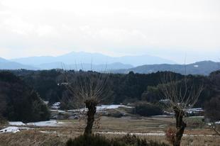 2017-01-30 006.JPG