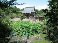 shinzenkouji8-12-28.jpg