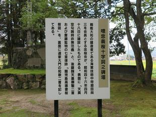 takanocyu5.jpg