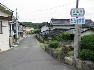 tanjyoji2.jpg