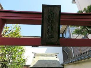 tsubaoi5.jpg