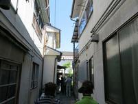 tsubaoi9.jpg