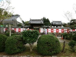 kokubunji22.jpg