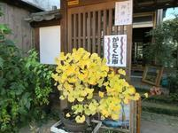 jyotou44.jpg