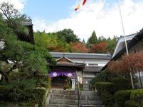 momiji_tera10.jpg