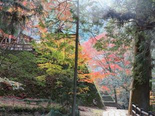 sanomiya2.jpg
