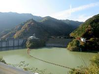 tsugawa3.jpg