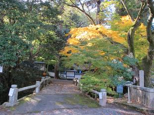 2012-11-18ryoshin.jpg