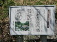 itaibara5.jpg